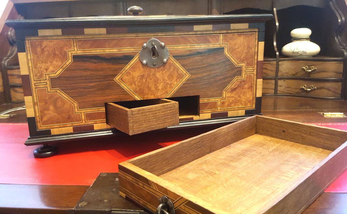 Cabinet de curiosit s salon habitat d co salon des for Salon habitat nancy